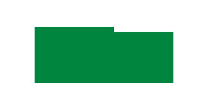 The Gifford Foundation